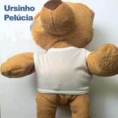 Ursinho de Pelúcia Personalizado 2